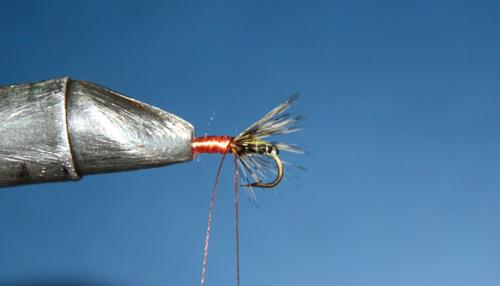 Sujamos la brinca de color marrón con unas vueltas entre la seda y la pluma. Cortamos el cabo sobrante.