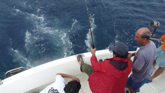 pescando bonitos