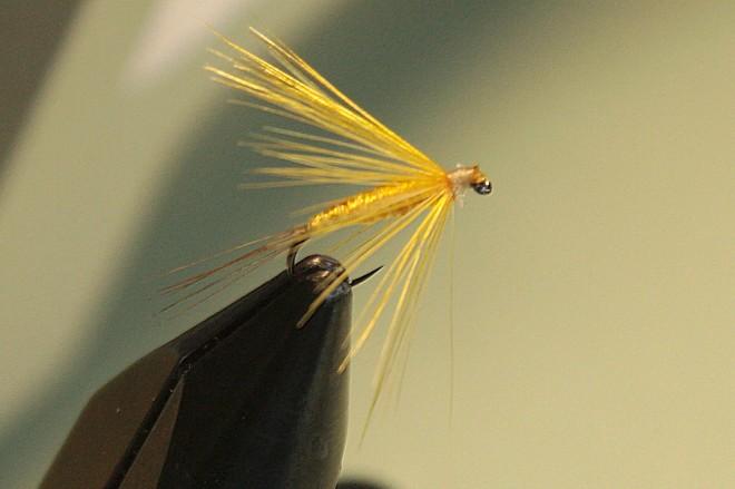 mosca ahogada